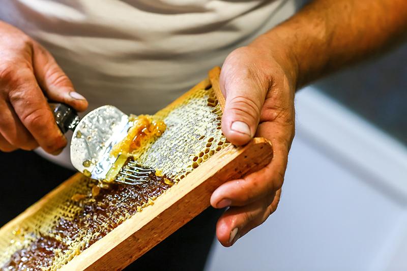 Med v plástoch je zapečatený voskovými viečkami. Tie sa pred stáčaním medu musia odstrániť vidličkou.