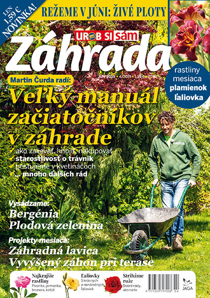 ZAHRADA 2019 04 1