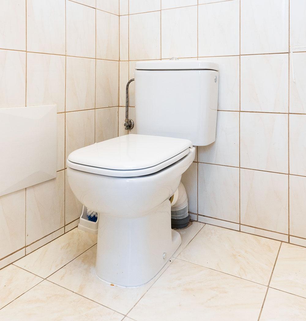WC misa