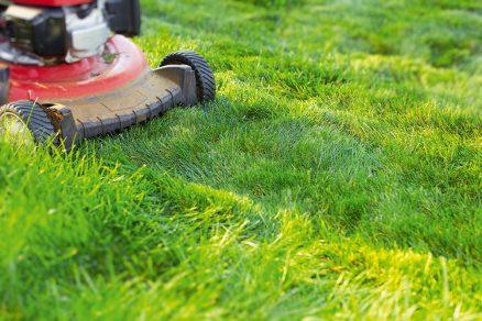 Kosenie trávnika576