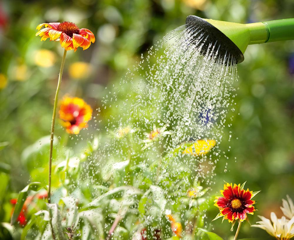 zavlažovanie záhrady