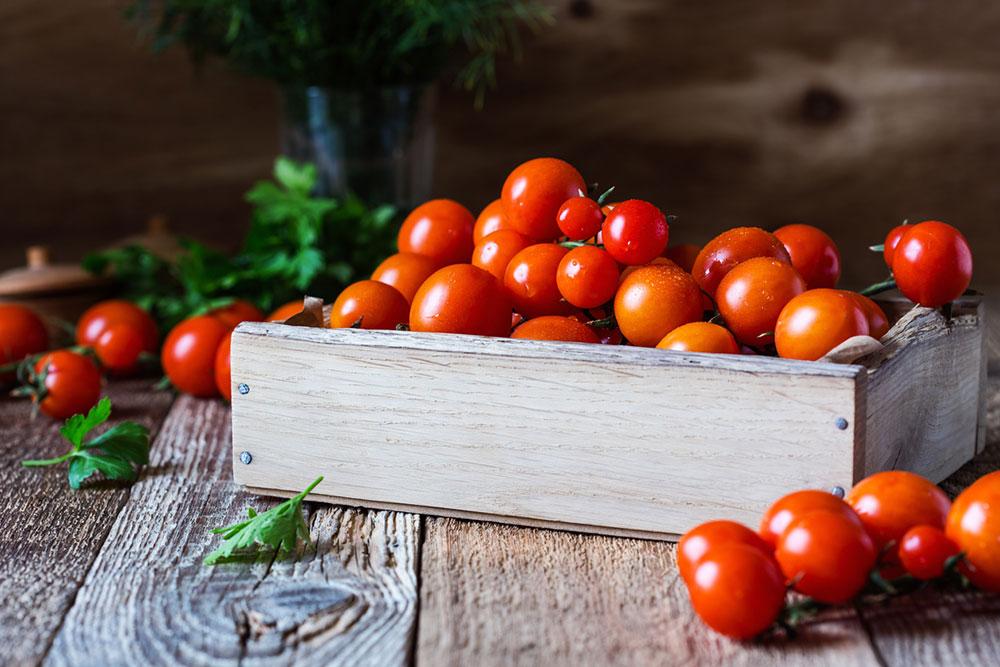 červené paradajky