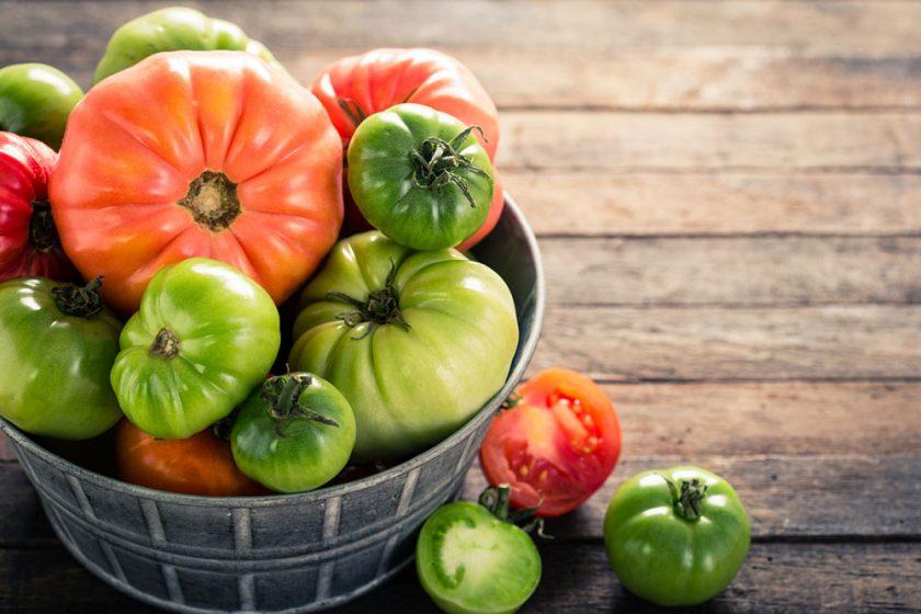 Zelené paradajky
