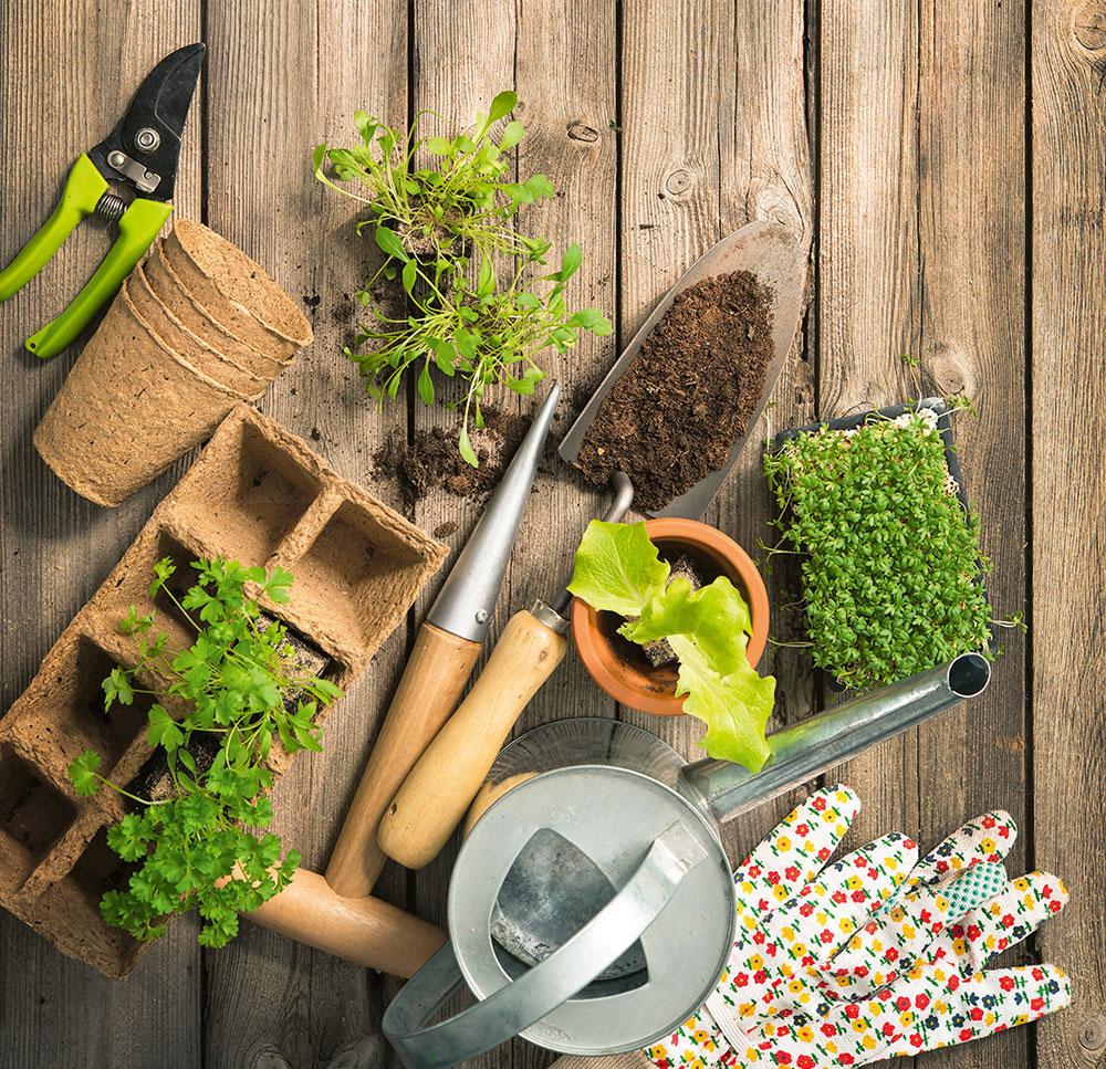 záhradné pomôcky na sadenie rastlín