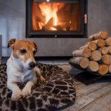kozub v obývačke