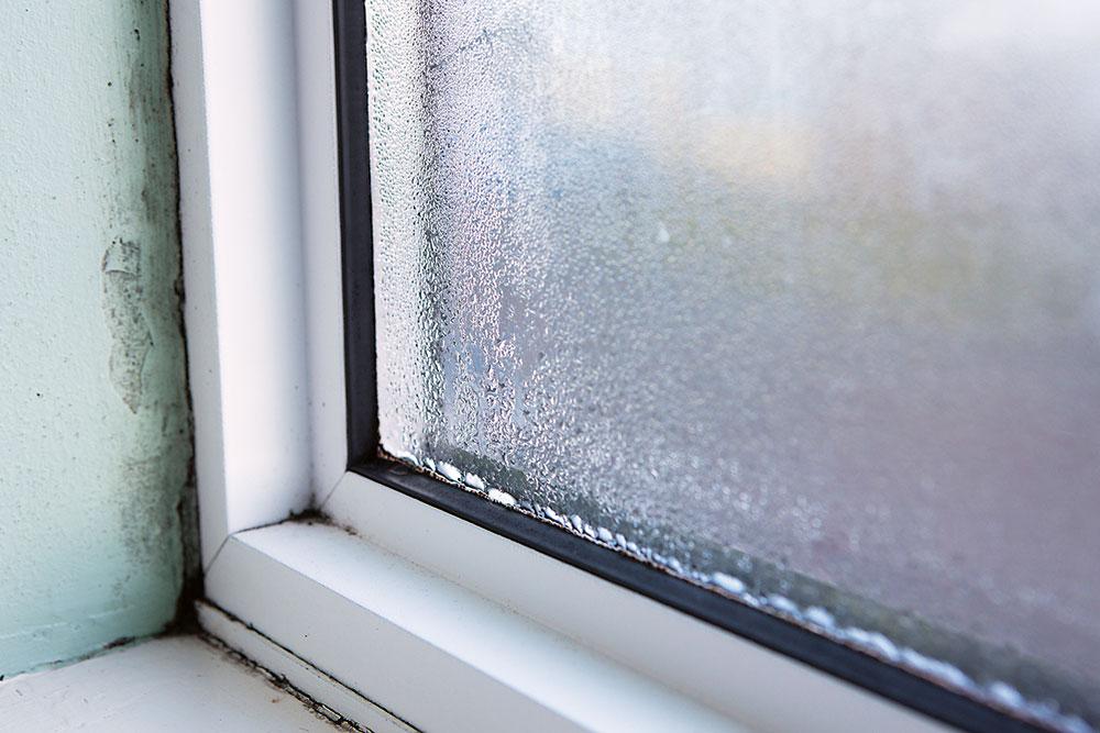 pleseň na stenách pri zarosenom oknu