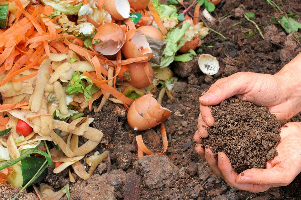 organický kompost