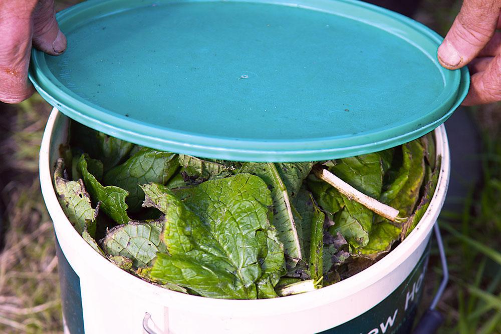 príprava domáceho hnojiva zkostihoja