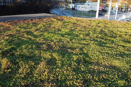 systém zelených striech Urbanscape