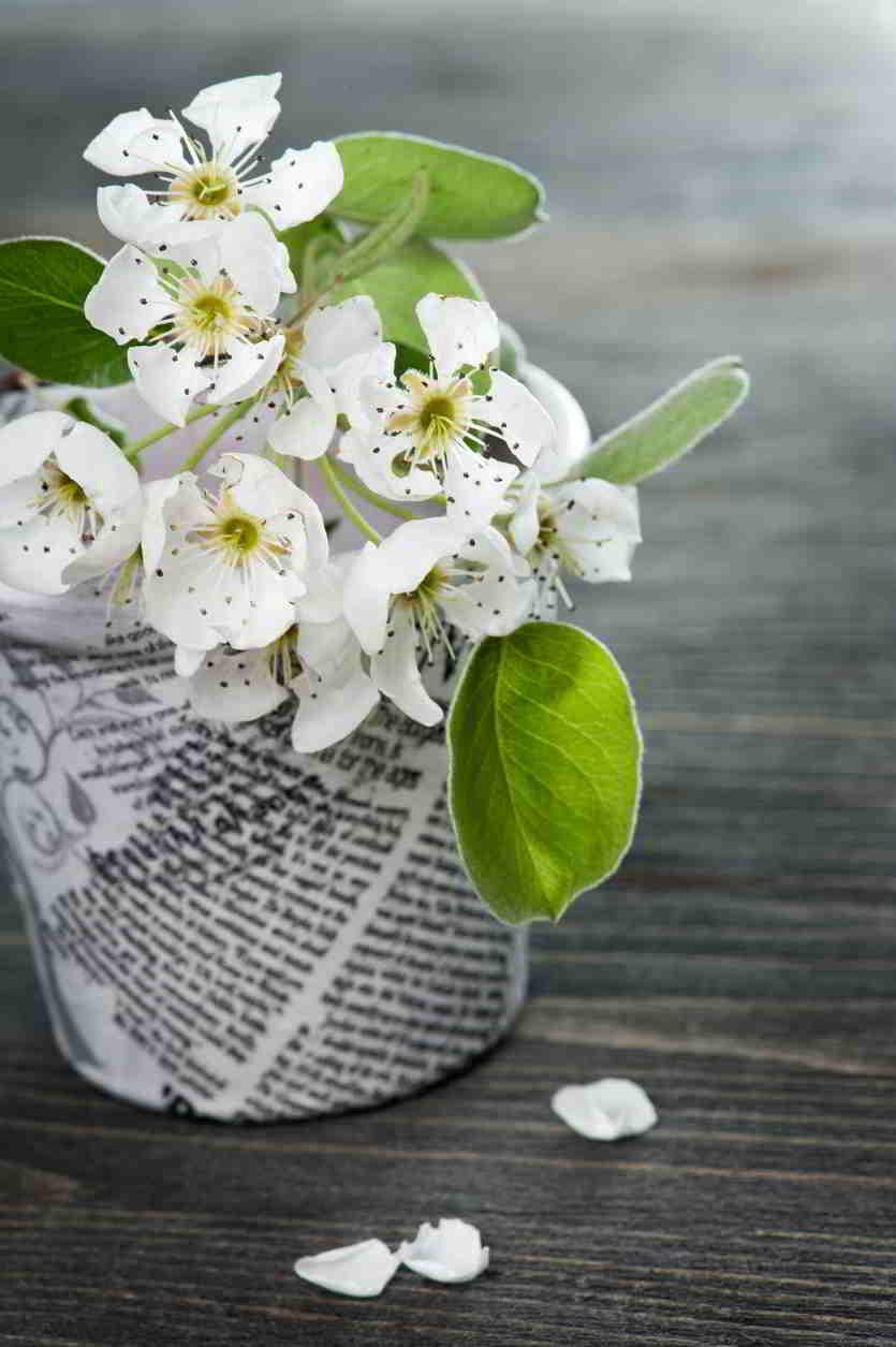 Kvetináče z novín