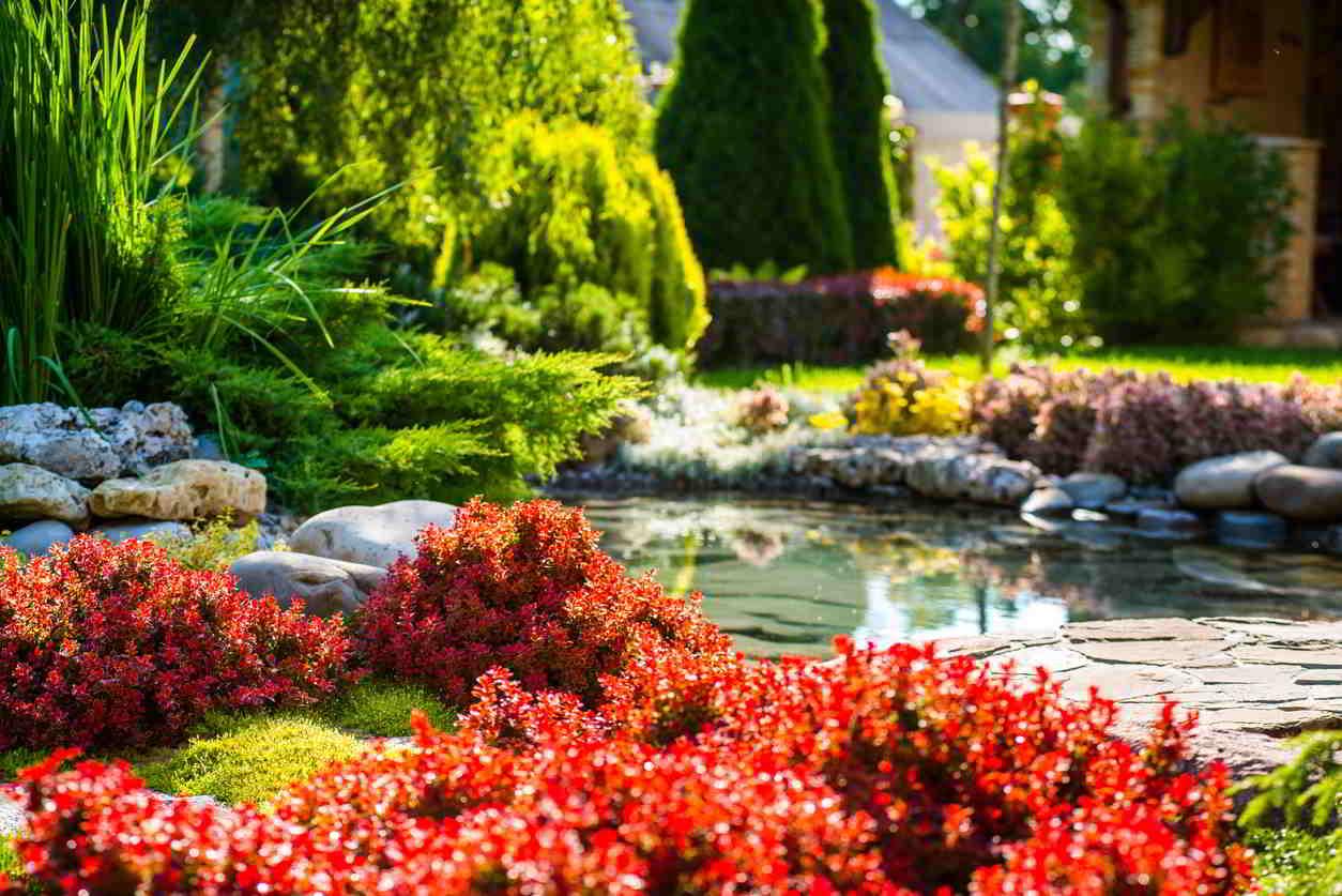 zahradné jazierko