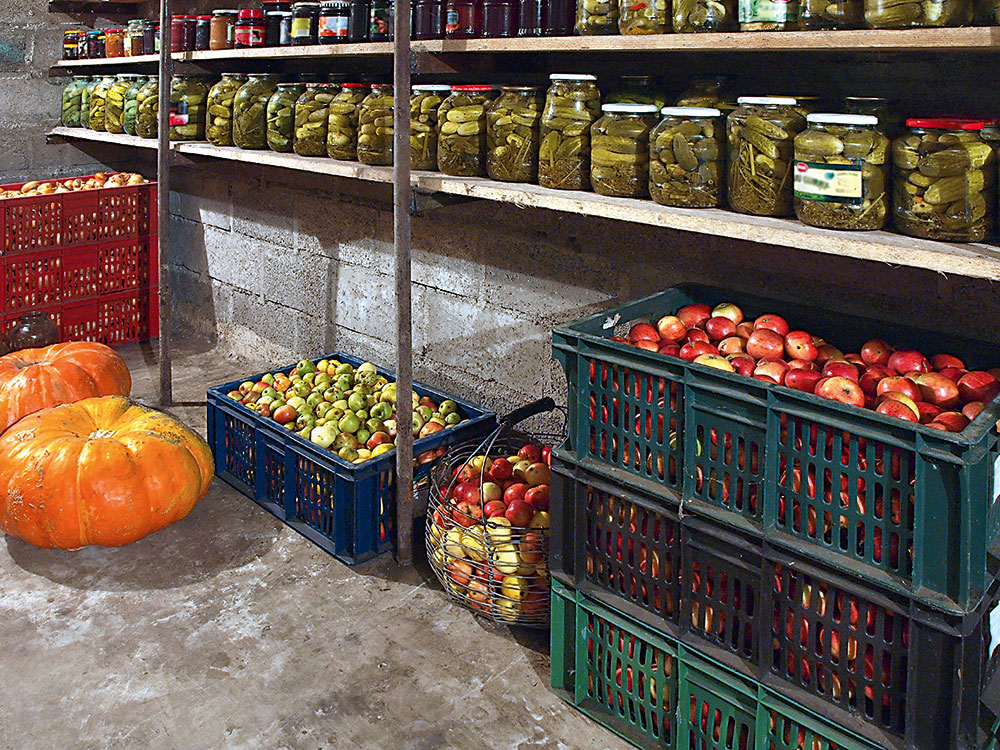 skladovanie ovocia a zeleniny v pivnici