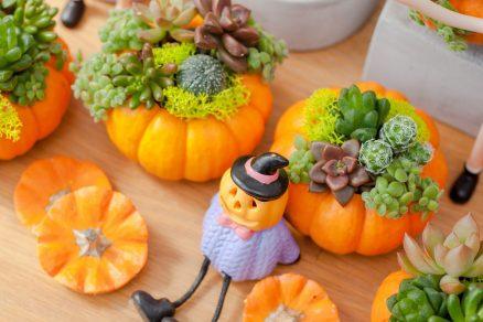 jesenné dekorácie z tekvice
