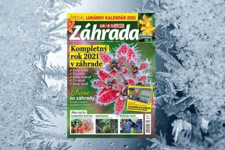časopis Záhrada 10/2020