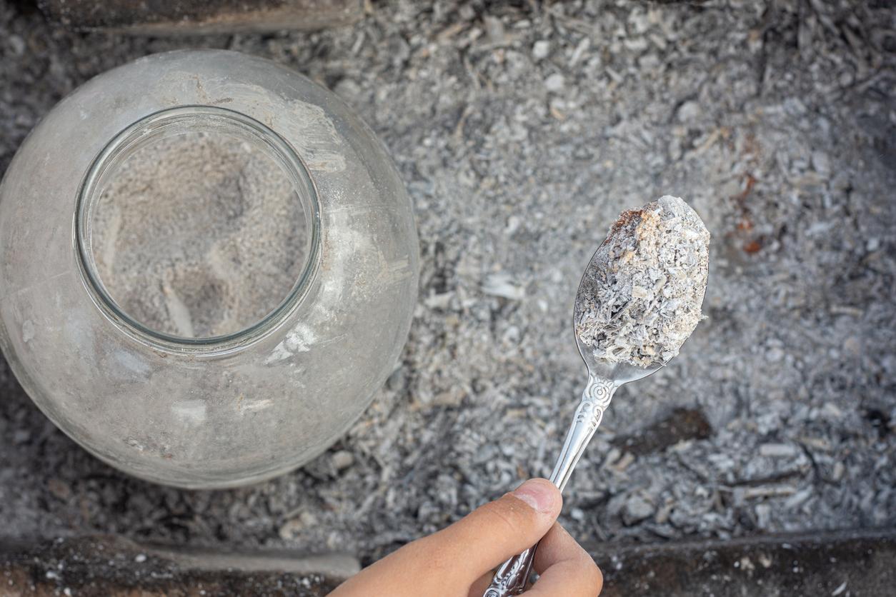 využitie drevného popola v záhrade