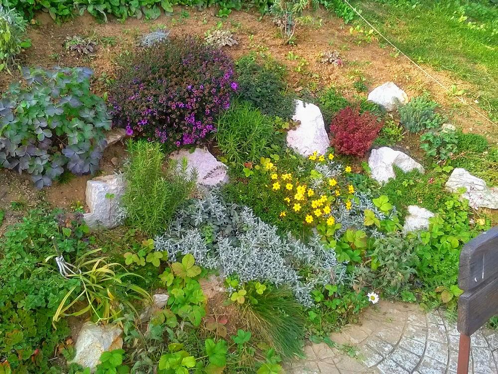 okrasná záhradka