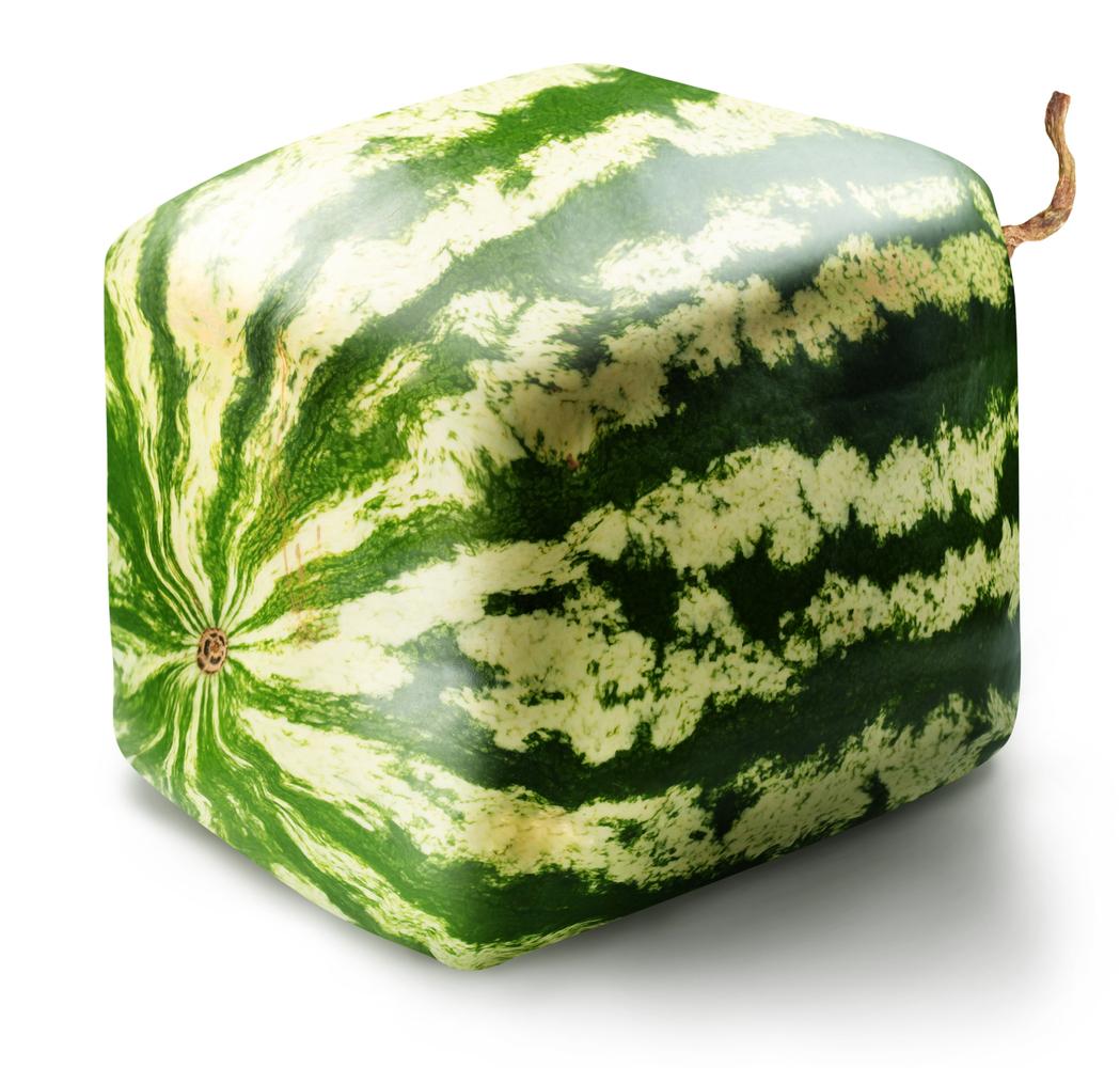 melón v tvare kocky