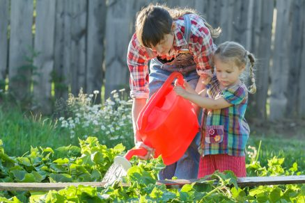 zalievanie letnej úrody