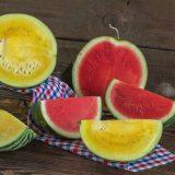 žltý a červený vodový melón