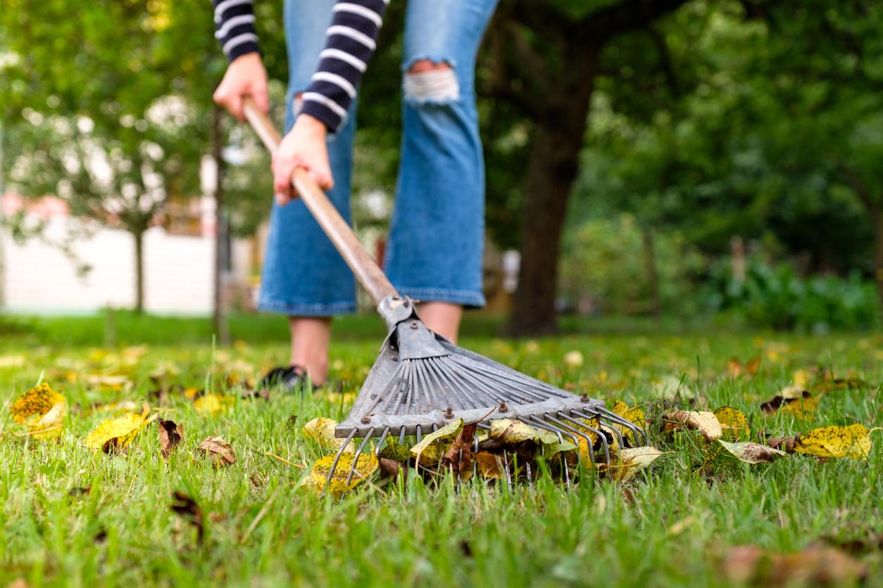 Jesenné upratovanie v záhrade