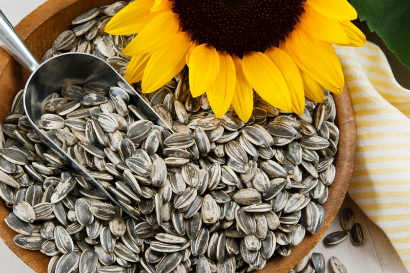 Slnečnicové semienka
