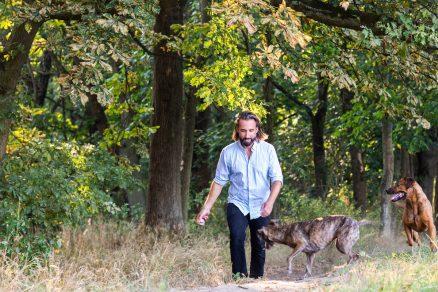 Muž kráčajúci hore kopcom so psami