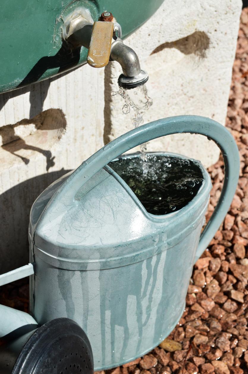 Zachytávanie dažďovej vody