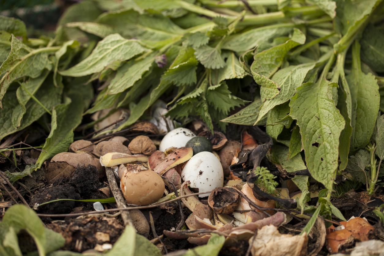 Záhradný kompost so žihľavou