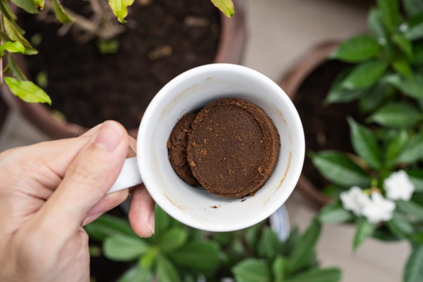 Kávová usadenina