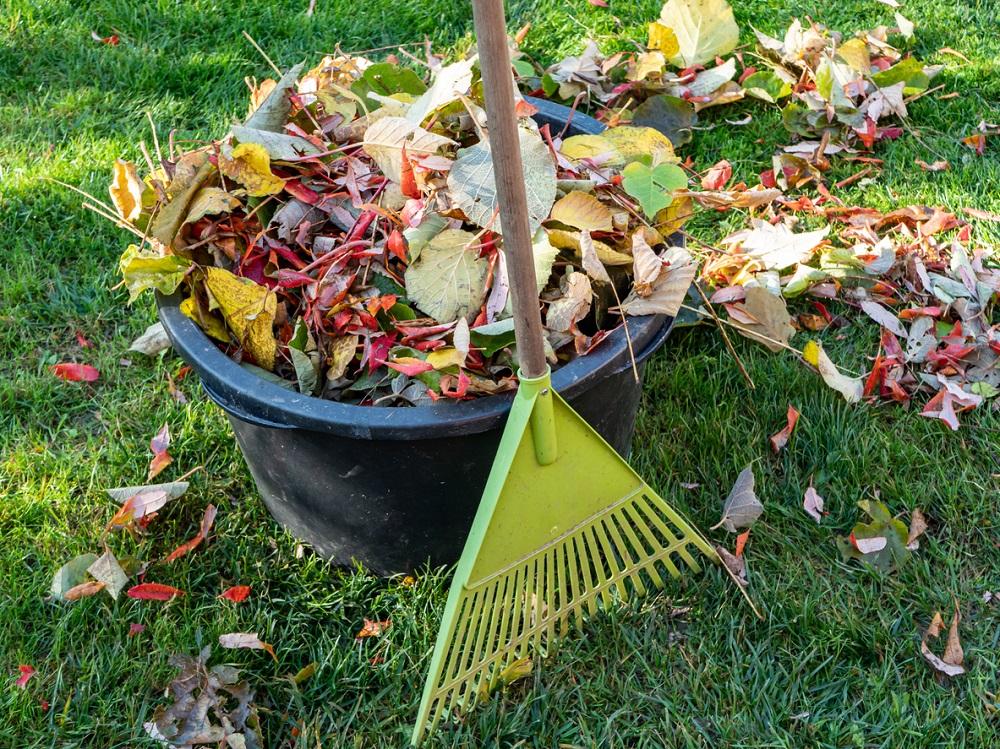 Práce v jesennej záhrade