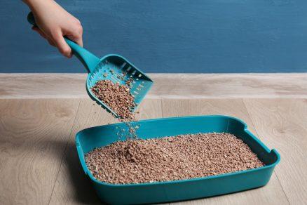 Bentonit sa často pridáva aj do steliva pre mačky.