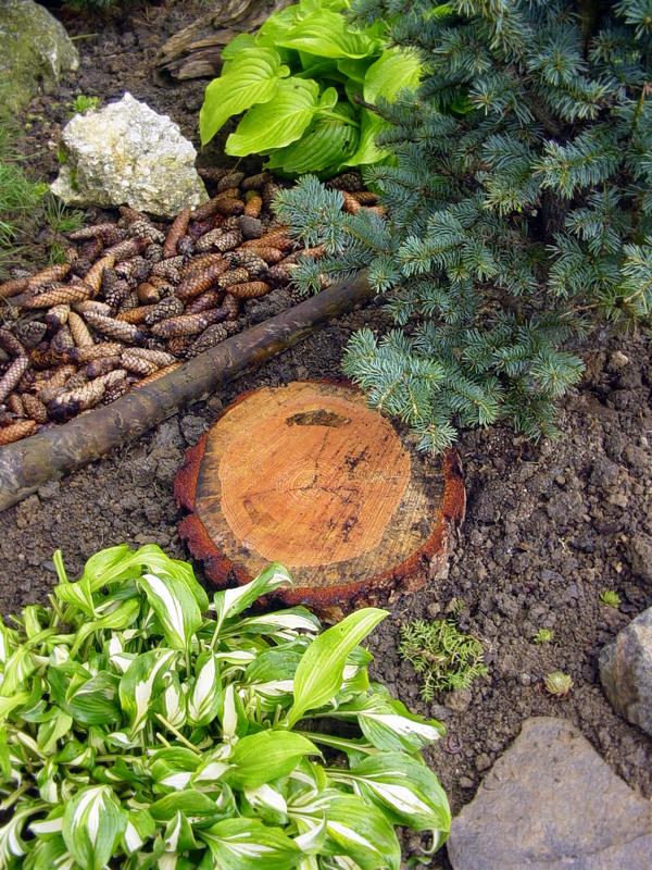 Lesík v okrasnej záhrade