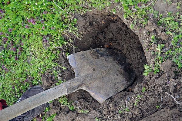 kopanie jamy