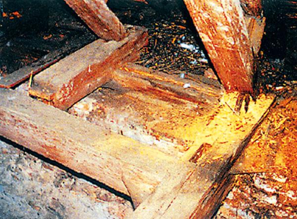 Poškodený krov