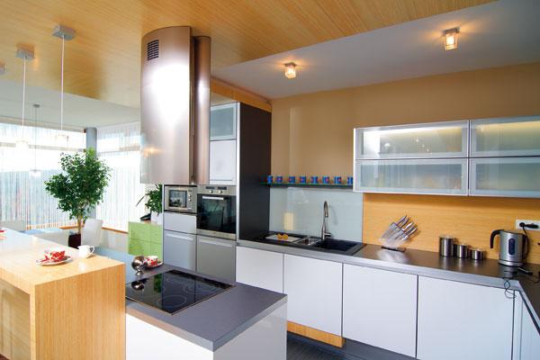 Zadnú plochu za pracovným, umývacím či varným centrom môžu tvoriť aj laminátové dosky, ktorých spodný okraj chráni tenká hliníková prechodová lišta alebo pás nehrdzavejúcej ocele. (Dano Veselský)