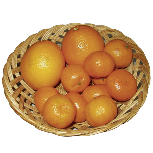 citrusy big image