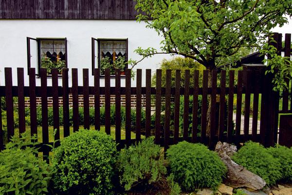 Pod oknami je jednoduchá predzáhradka oplotená klasickým latkovým plotom, pred ktorým je rad drobných kríkov, ktoré vhodne dopĺňajú kamene a torzá kmeňov z blízkeho lesa.