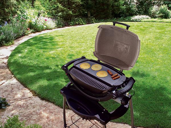09 weber 1435 q100 grillpla big image