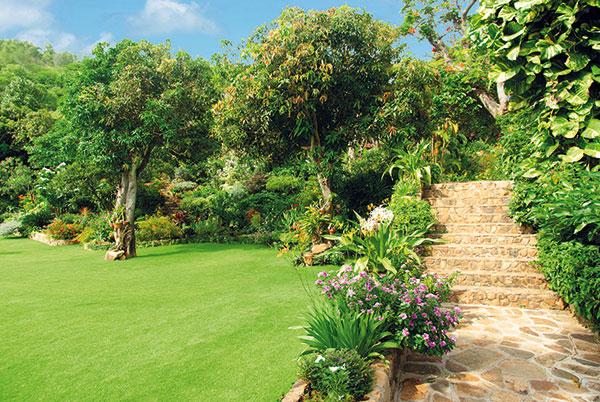 liečivá záhrada