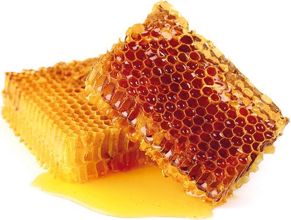 medové plásty