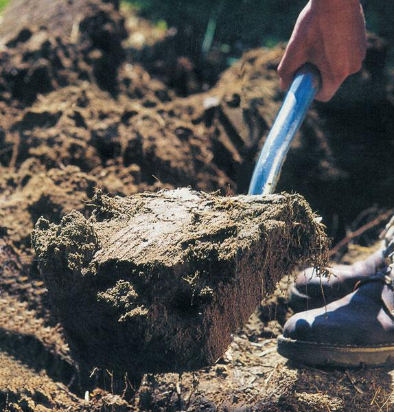 Čím ťažšia je pôda, tým užitočnejšie je hlboké rýľovanie pozemku.