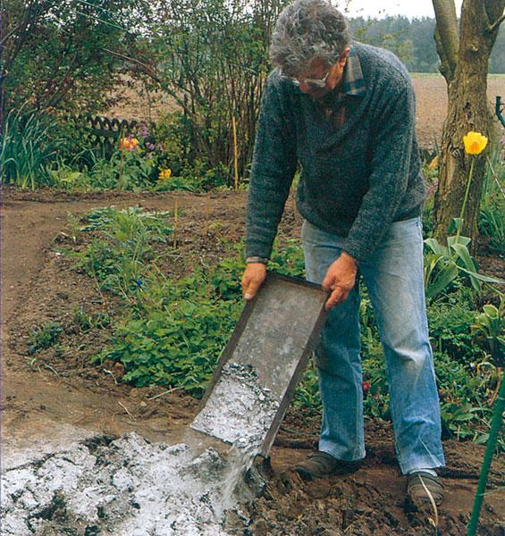 Na zvýšenie obsahu minerálov v pôde môžeme použiť aj popol z dreva.