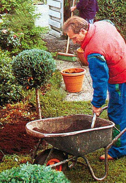 Pôdu okolo krov a stromov musíme kypriť opatrne, aby sme nepoškodili koreňovú sústavu rastlín.