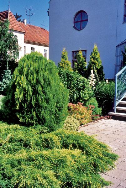 17 zahrada big image