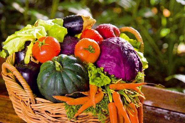 topinambury a cakanka zelenina nielen pre diabetikov 1925 big image