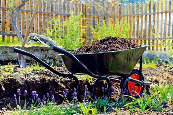 8 rad ako po zime prebudit zahradu