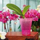 aby boli vase orchidey opat vo forme