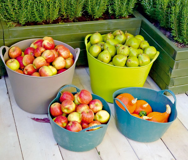 Ako správne uskladniť ovocie na zimu