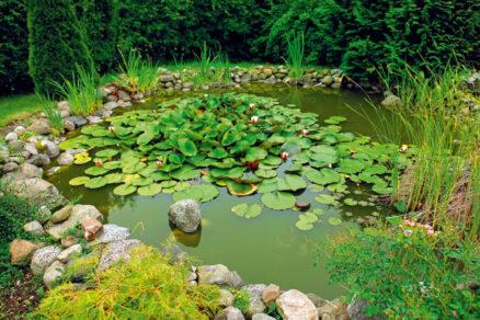 ako vytvorit zahradne jazierko bez drahych technologii
