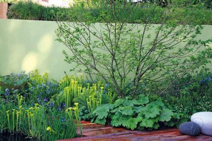 Riešenia pre bahnistú pôdu v záhrade